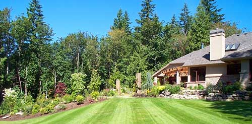Landscaping ideas picture