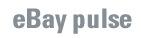 eBay Pulse